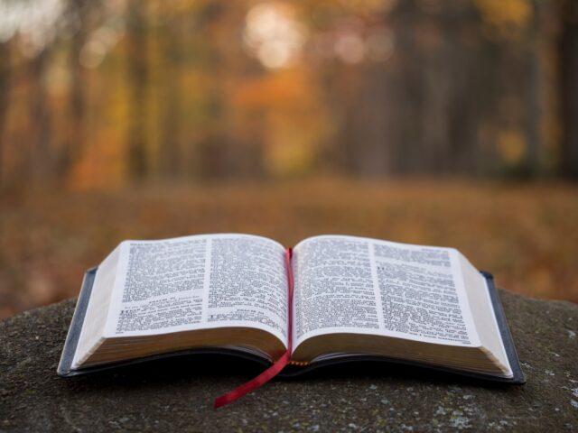 Bibelrunda